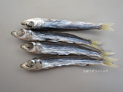 daizennuruma8888.jpg